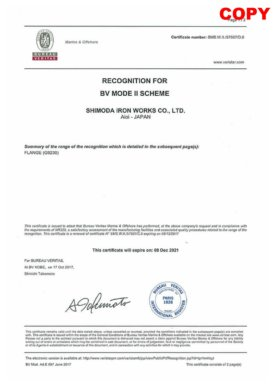 Bureau Veritas<br>Certified as a supplier of forged products by an international certification body: Bureau Veritas.